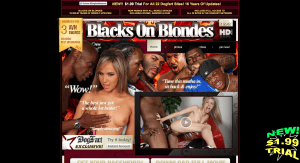 "Blacksonblondes.com ""best pay porn site of the year"""
